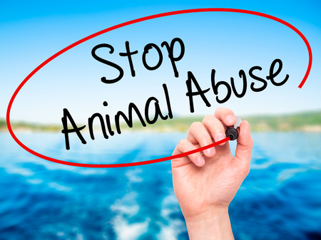 maltreatment: Man Hand writing Stop Animal Abuse with black marker on visual screen. Isolated on background. Business,  technology, internet concept. Stock Photo