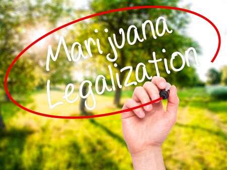 legislators: Man Hand writing Marijuana Legalization with black marker on visual screen. Isolated on nature. Live, technology, internet concept. Stock Photo Stock Photo