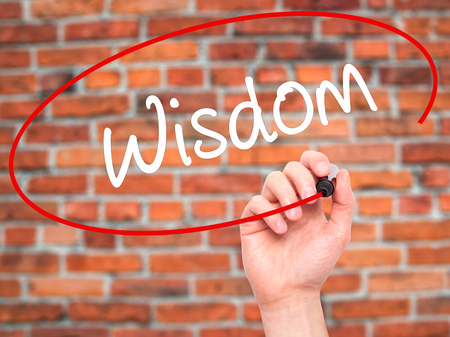 rationale: Man Hand writing Wisdom with black marker on visual screen. Isolated on bricks. Business, technology, internet concept. Stock Photo