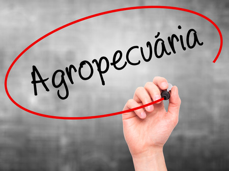 exportation: Man Hand writing Agropecuaria (Agriculture in Portuguese) with black marker on visual screen. Isolated on background. Business, technology, internet concept. Stock  Photo