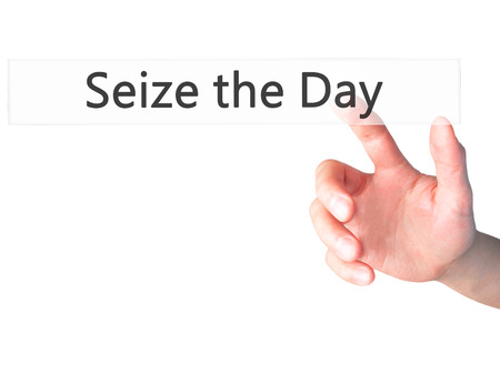 seize: Seize the Day - Businesswoman hand pressing button on touch screen interface.