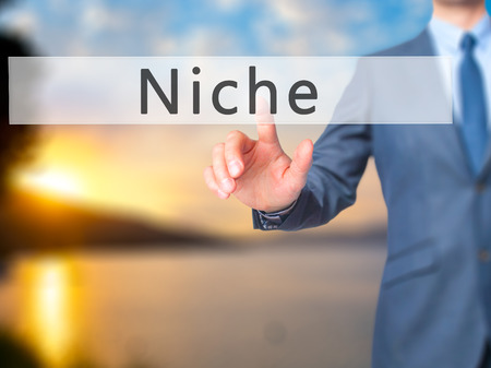 specialize: Niche - Businessman hand pressing button on touch screen interface. Business, technology, internet concept. Stock Photo Stock Photo