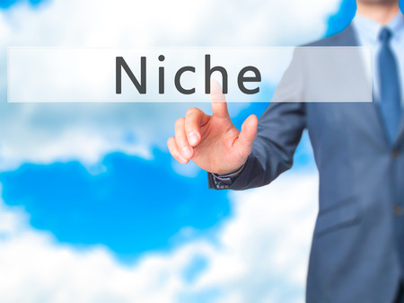 niche: Niche - Businessman hand pressing button on touch screen interface. Business, technology, internet concept. Stock Photo Stock Photo