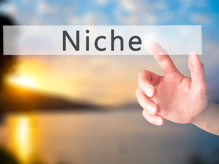 specialize: Niche - Hand pressing a button on blurred background concept . Business, technology, internet concept. Stock Photo