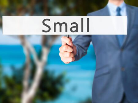diminutive: Small - Businessman hand holding sign. Business, technology, internet concept. Stock Photo