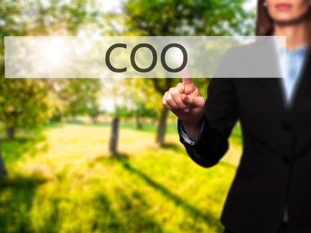 coo: COO -  Successful businesswoman making use of innovative technologies and finger pressing button. Business, future and technology concept. Stock Photo