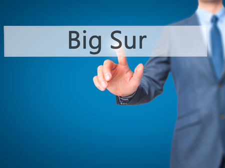 lucia: Big Sur - Businessman pressing virtual button. Business, technology  concept. Stock Photo Stock Photo