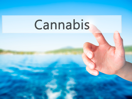 Cannabis - Hand pressing a button on blurred background concept . Business, technology, internet concept. Stock Photo Stock Photo