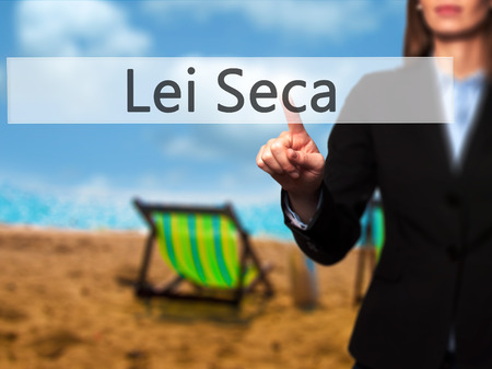 Lei Seca (Prohibition Alcohol Law n Portuguese) - Businesswoman pressing high tech  modern button on a virtual background. Business, technology, internet concept. Stock Photo Stock Photo