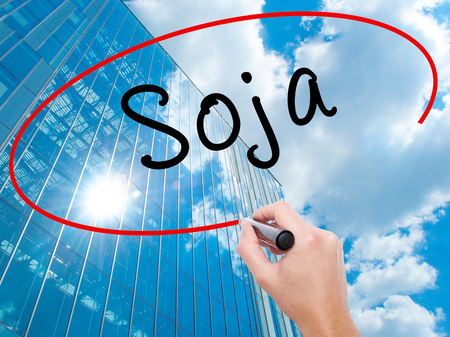 soja: Man Hand writing Soja (Soybean in Portuguese) with black marker on visual screen. Business, technology, internet concept. Modern business skyscrapers background. Stock Photo