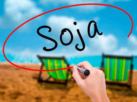 soja: Man Hand writing Soja (Soybean in Portuguese) with black marker on visual screen. Isolated on sunbed on the beach. Business, technology, internet concept. Stock Photo