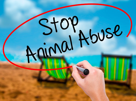 maltreatment: Man Hand writing Stop Animal Abuse with black marker on visual screen. Isolated on sunbed on the beach. Business,  technology, internet concept. Stock Photo Stock Photo