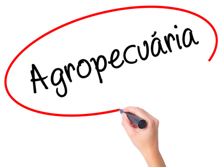 exportation: Women Hand writing Agropecuaria (Agriculture in Portuguese) with black marker on visual screen. Isolated on white. Business, technology, internet concept. Stock  Photo