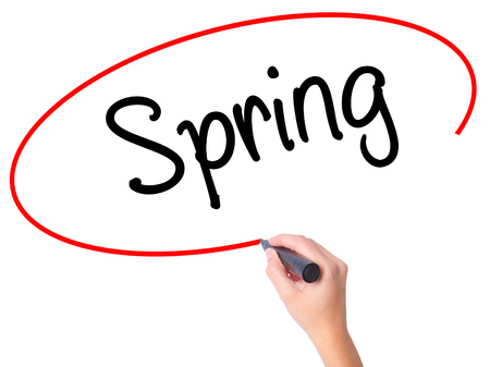 springbreak: Women Hand writing Spring with black marker on visual screen. Isolated on white. Business, technology, internet concept. Stock Photo