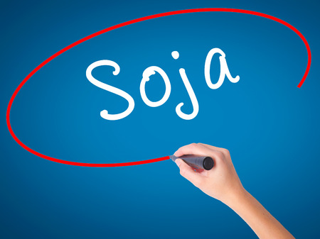 soja: Women Hand writing Soja (Soybean in Portuguese) with black marker on visual screen. Isolated on blue. Business, technology, internet concept. Stock Photo