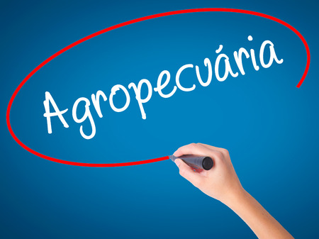 Women Hand writing Agropecuaria (Agriculture in Portuguese) with black marker on visual screen. Isolated on blue. Business, technology, internet concept. Stock  Photo Stock Photo