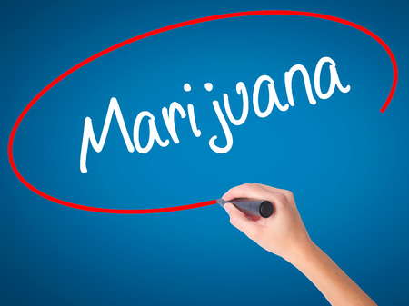 american downloads: Women Hand writing Marijuana with black marker on visual screen. Isolated on blue. Business, technology, internet concept. Stock Photo