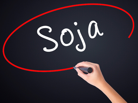 soja: Woman Hand Writing Soja (Soybean in Portuguese) on blank transparent board with a marker isolated over black background. Business concept. Stock Photo