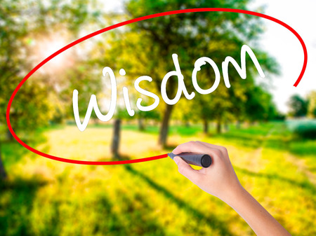 smartness: Woman Hand Writing Wisdom on blank transparent board with a marker isolated over green field background. Business concept. Stock Photo