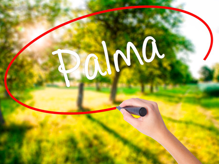 Woman Hand Writing Palma  on blank transparent board with a marker isolated over green field background. Business concept. Stock Photo Stock Photo