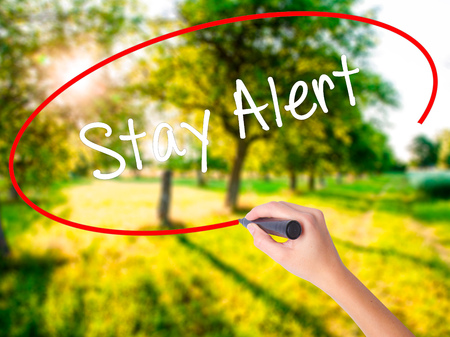 Woman Hand Writing Stay Alert on blank transparent board with a marker isolated over green field background. Business concept. Stock Photo