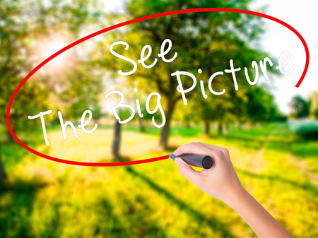 big picture: Woman Hand Writing See The Big Picture on blank transparent board with a marker isolated over green field background. Business concept. Stock Photo