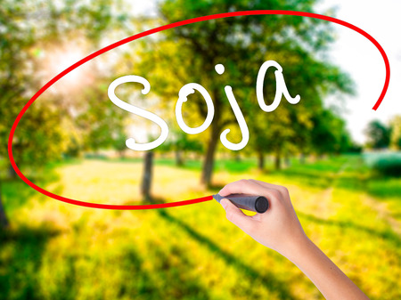 soja: Woman Hand Writing Soja (Soybean in Portuguese) on blank transparent board with a marker isolated over green field background. Business concept. Stock Photo