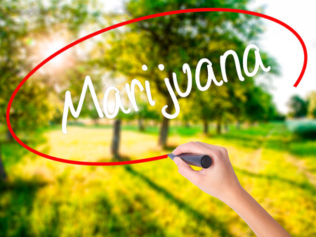 american downloads: Woman Hand Writing Marijuana on blank transparent board with a marker isolated over green field background. Business concept. Stock Photo