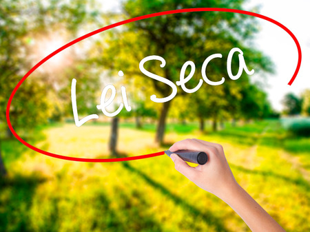 Woman Hand Writing Lei Seca (Prohibition Alcohol Law n Portuguese) on blank transparent board with a marker isolated over green field background. Business concept. Stock Photo