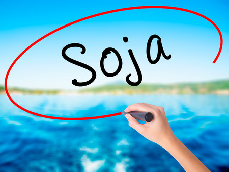 Woman Hand Writing Soja (Soybean in Portuguese) on blank transparent board with a marker isolated over water background. Business concept. Stock Photo