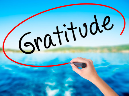 Woman Hand Writing Gratitude on blank transparent board with a marker isolated over water background. Business concept. Stock Photo Stock Photo