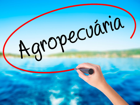 Woman Hand Writing Agropecuaria (Agriculture in Portuguese) with a marker over transparent board. Isolated on background. Business, technology, internet concept. Stock  Photo