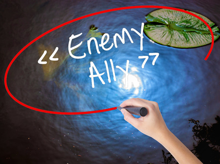 interdependence: Woman Hand Writing Enemy - Ally with marker over transparent board. Isolated on nature. Business concept. Stock Photo Stock Photo