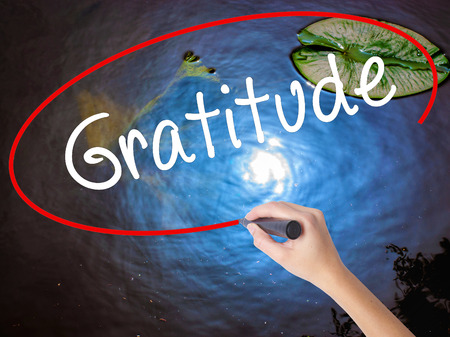 humility: Woman Hand Writing Gratitude with marker over transparent board. Isolated on nature. Business concept. Stock Photo Stock Photo