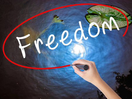 Woman Hand Writing Freedom with marker over transparent board. Isolated on nature. Business concept. Stock Image Stock Photo