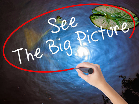big picture: Woman Hand Writing See The Big Picture with marker over transparent board. Isolated on nature. Business concept. Stock Image Stock Photo