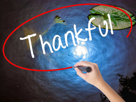 obliged: Woman Hand Writing Thankful  with marker over transparent board. Isolated on nature. Business concept. Stock Photo