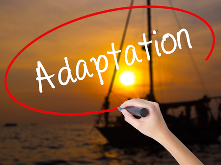 adaptation: Woman Hand Writing  Adaptation  with a marker over transparent board. Isolated on Sunset Boat. Business concept. Stock Photo