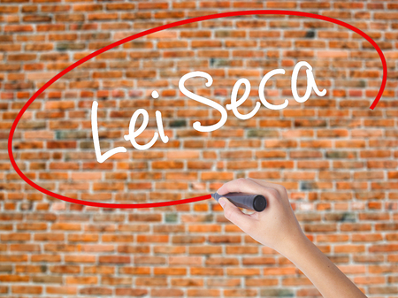 Woman Hand Writing Lei Seca (Prohibition Alcohol Law n Portuguese) with black marker on visual screen. Isolated on bricks. Business concept. Stock Photo