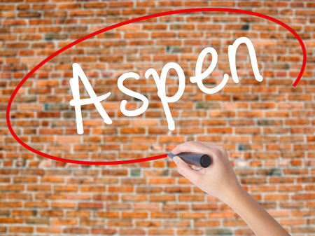 Woman Hand Writing Aspen with black marker on visual screen. Isolated on bricks. Business concept. Stock Photo Stock Photo