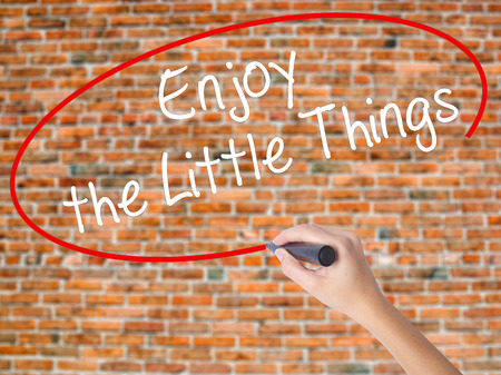 usefulness: Woman Hand Writing  Enjoy the Little Things with black marker on visual screen. Isolated on bricks. Business concept. Stock Photo