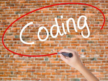 Woman Hand Writing Coding with black marker on visual screen. Isolated on bricks. Business concept. Stock Photo