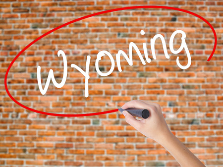 Woman Hand Writing Wyoming  with black marker on visual screen. Isolated on bricks. Business concept. Stock Photo Stock Photo