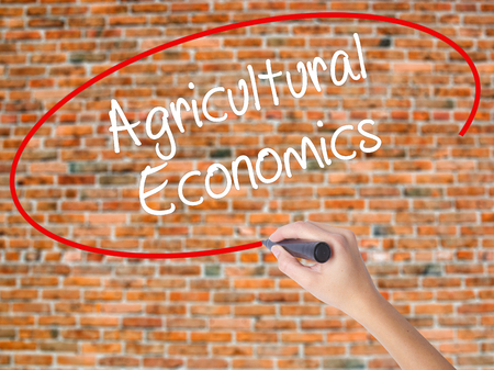 Woman Hand Writing Agricultural Economics with black marker on visual screen. Isolated on bricks. Business concept. Stock Photo