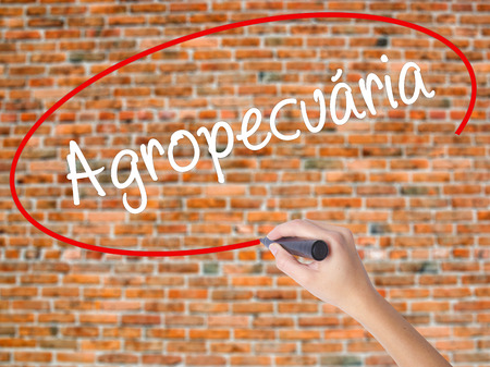 Woman Hand Writing Agropecuaria (Agriculture in Portuguese) with black marker on visual screen. Isolated on bricks. Business, technology, internet concept. Stock  Photo Stock Photo