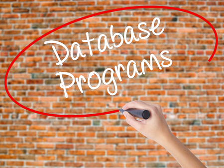 syntax: Woman Hand Writing Database Programs with black marker on visual screen. Isolated on bricks. Business concept. Stock Photo