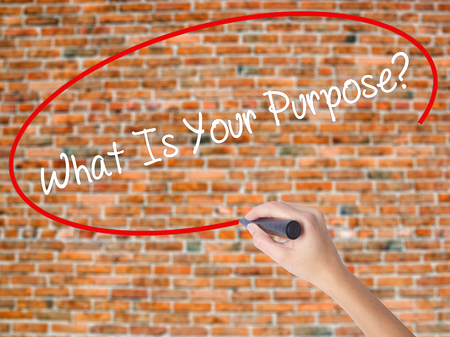 Woman Hand Writing What Is Your Purpose?  with black marker on visual screen. Isolated on bricks. Business concept. Stock Photo