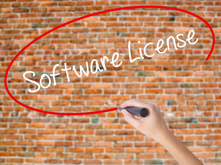 linker: Woman Hand Writing Software License with black marker on visual screen. Isolated on bricks. Business, technology, internet concept. Stock Photo