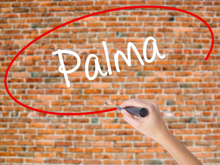 Woman Hand Writing Palma  with black marker on visual screen. Isolated on bricks. Business concept. Stock Photo