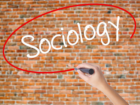 Woman Hand Writing Sociology  with black marker on visual screen. Isolated on bricks. Business concept. Stock Photo